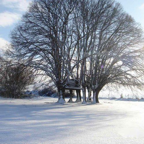 crabillon-neige
